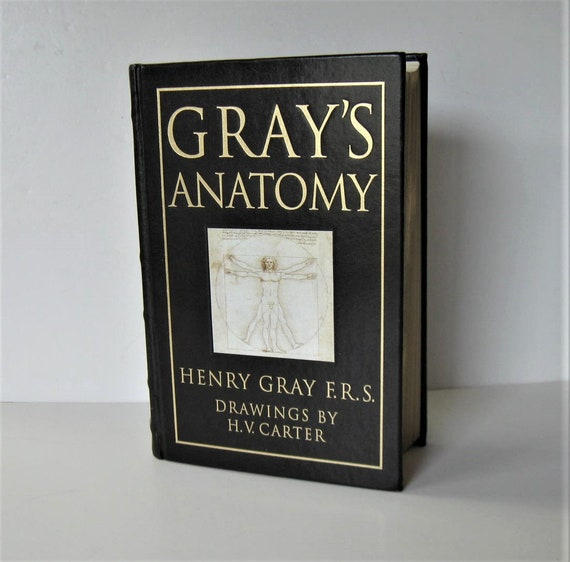 Vintage Leather bound Gray\'s Anatomy Henry Gray Medical   Etsy