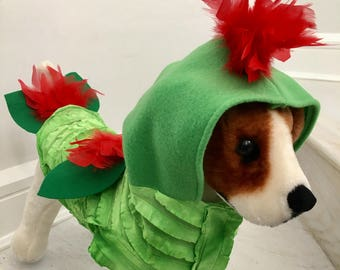 Exotic rooster costume by FiercePetFashion