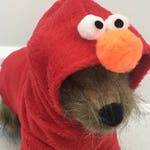 Elmo costume, Dog halloween costume, Pet halloween costume by FiercePetFashion
