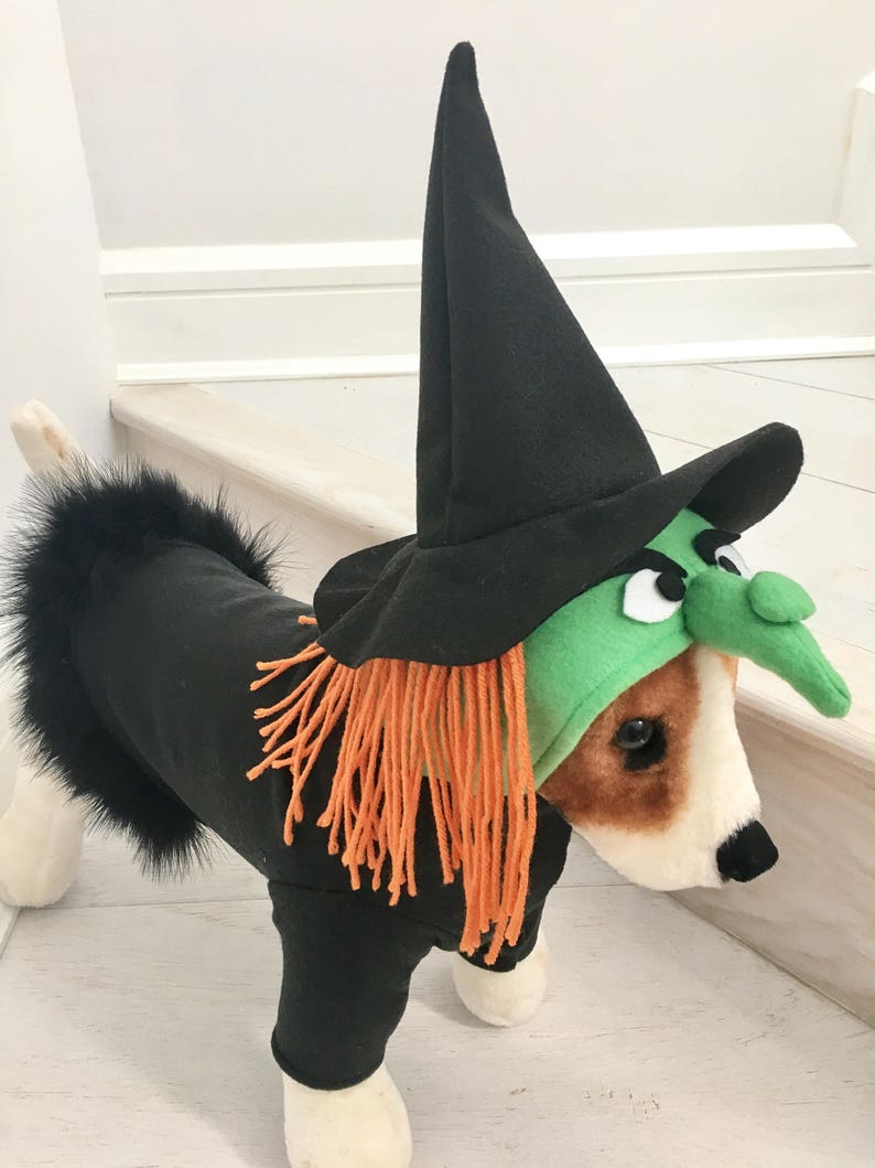 Witch costume Dog halloween costume Dog witch costume by image 0