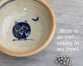 Owl bowl ceramic kids bowl pottery bowl with animal ornament toddler plate salad cereal dish for children & adults