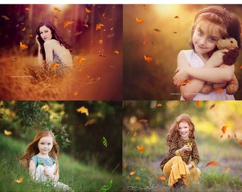 Falling Leaves Photo Overlays for Photographers PNG files, Leaf Overlays, Falling Leaves, Photoshop Leaf Overlays, Real Leaf Overlays