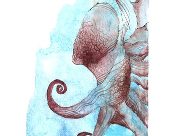 """Octopus Painting - Coconut  - Fine Art Giclee Print of 14""""x11"""" Blue and Maroon Watercolor Painting"""