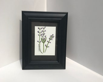 Original watercolor lavender wildflower herbalism painting ATC ARTIST Trading Card