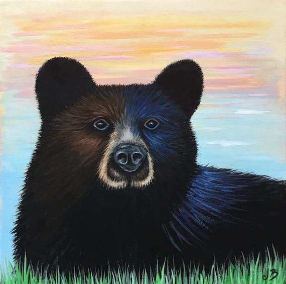 Black Mountain Bear