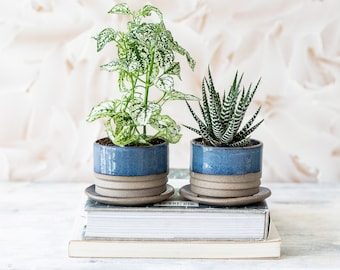 Succulent Planter Pot with Underplate, Small Ceramic Planter Pot, Cacti Flower Pot with Plate, Boss Birthday Gift, Decorative Planter