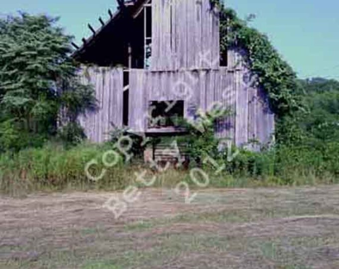 Old Barn in a summer hay field