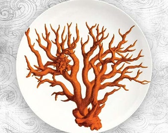 red coral plate