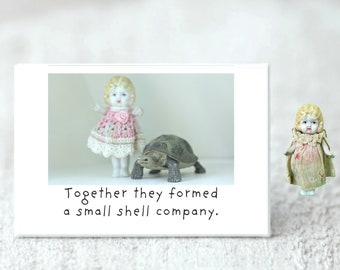 Small Shell Company Funny Doll Turtle Magnet Adventures of Claudia
