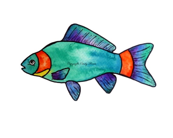 Fish Png File Transparent Png File Fishes Png Digital Etsy