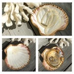 Shell Ring Holder/Gold Leaf Oyster Shell/Wedding Party Gift/Hostess Gift/Oyster Shell Art