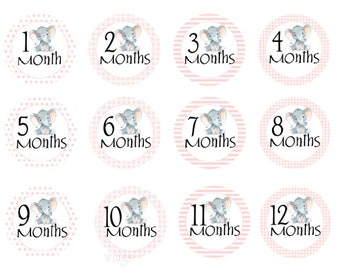 Baby Month Stickers Montly Stickers Baby Shower Gift Montly Baby Stickers Pink Gray Elephants