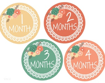 Baby Month Stickers Baby Milestone Stickers Monthly Stickers Monthly Baby Stickers Month Stickers Baby Shower Gift