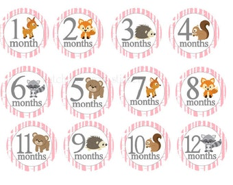Baby Month Stickers Baby Monthly Stickers Milestone Stickers Baby Shower Gift Woodland Stickers