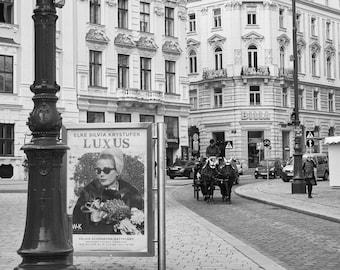 Vienna Street Horse Drawn Carriage (Scene 2 Black and White) - Vintage Looking Original Photography - Austria