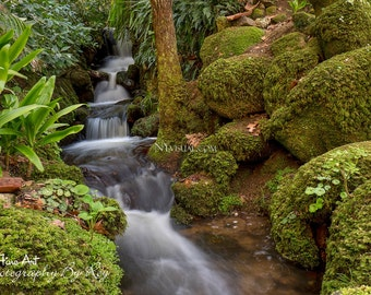 Cascading Waterfall and Moss on Rocks. Palacio de Monserrate in Sintra, Portugal. Original Fine Art Photography. Nature Landscape Zen photo