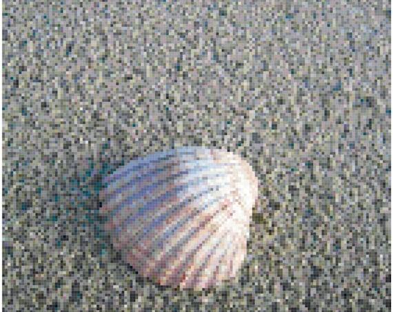 Seashell on the Beach Counted Cross Stitch Pattern Chart PDF Download by Stitching Addiction