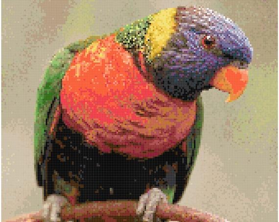 Rainbow Lorikeet Counted Cross Stitch Pattern Chart PDF Download by Stitching Addiction