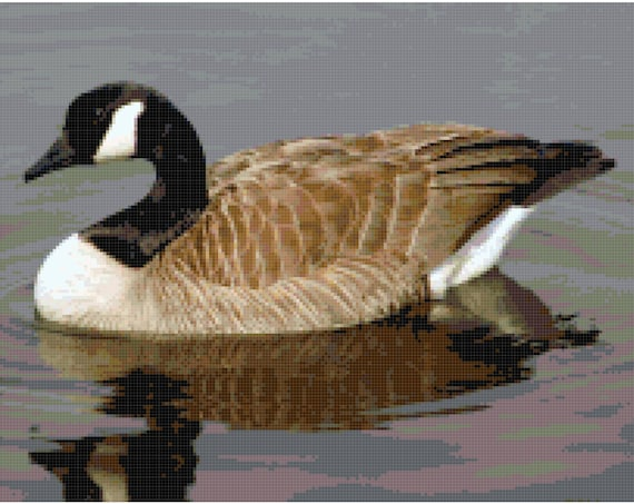 Canadian Goose Counted Cross Stitch Pattern Chart PDF Download by Stitching Addiction