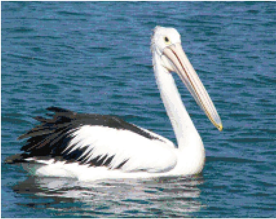 Pelican Counted Cross Stitch Pattern Chart PDF Download by Stitching Addiction