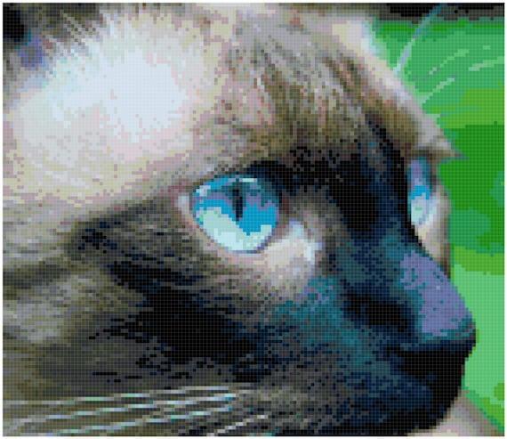 Siamese Cat Close-up Counted Cross Stitch Pattern Chart PDF Download by Stitching Addiction