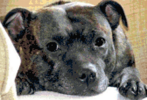 Staffordshire Butt Terrier Pit Bull Counted Cross Stitch Pattern Chart PDF Download by Stitching Addiction
