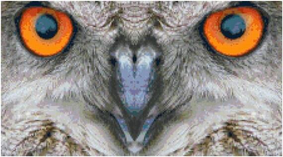 Orange Owl Eyes Counted Cross Stitch Pattern Chart PDF Download by Stitching Addiction