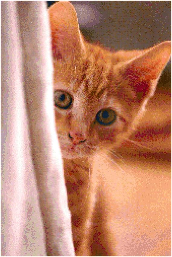 Orange Tabby Cat Kitten Counted Cross Stitch Pattern Chart PDF Download by Stitching Addiction