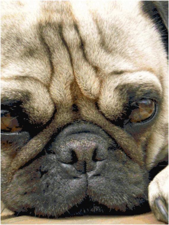 Pug Counted Cross Stitch Pattern Chart PDF Download by Stitching Addiction