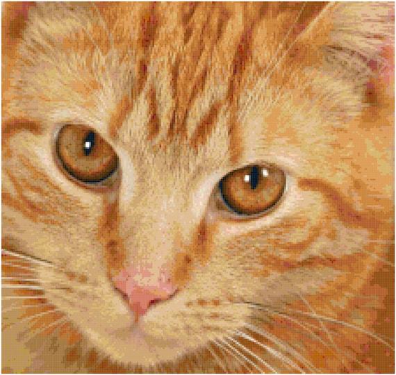 Orange Tabby Cat Counted Cross Stitch Pattern Chart PDF Download by Stitching Addiction