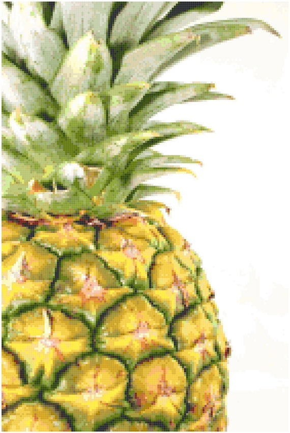 Pineapple Counted Cross Stitch Pattern Chart PDF Download by Stitching Addiction