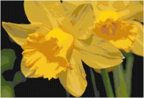 Daffodils Counted Cross Stitch Pattern Chart PDF Download by Stitching Addiction