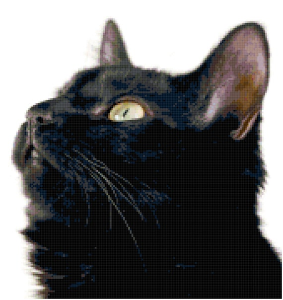 Black Cat Looking Up Counted Cross Stitch Pattern Chart PDF Download by Stitching Addiction