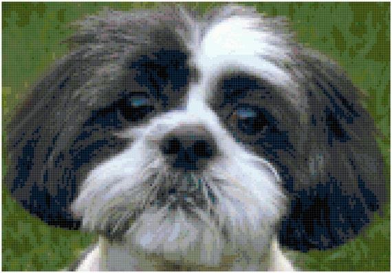 Shih Tzu Dog Puppy Counted Cross Stitch Pattern Chart PDF Download by Stitching Addiction