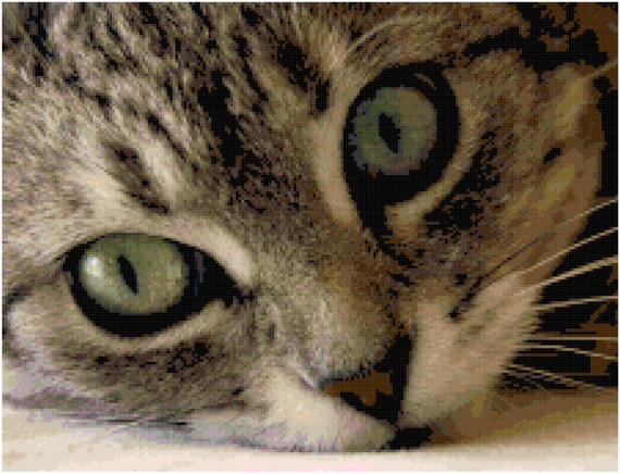 Green Eyed Gray Tabby Cat Counted Cross Stitch Pattern Chart PDF Download by Stitching Addiction