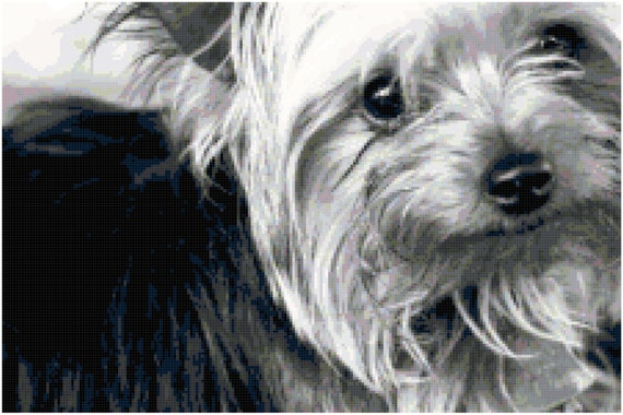 Yorkie Yorkshire Terrier Counted Cross Stitch Pattern Chart PDF Download by Stitching Addiction