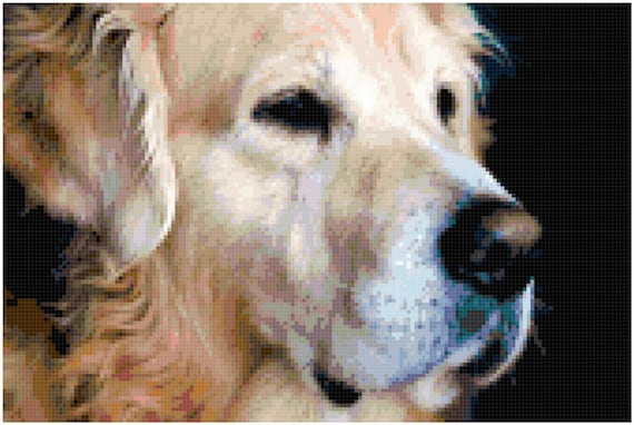 Golden Retriver Counted Cross Stitch Pattern Chart PDF Download by Stitching Addiction