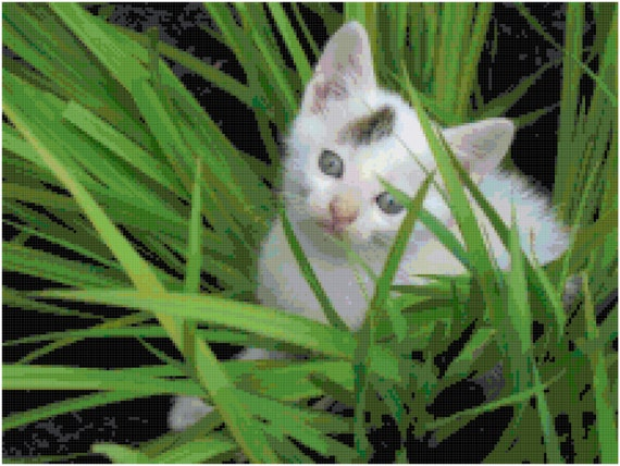 Kitten in the Grass White Cat Counted Cross Stitch Pattern Chart PDF Download by Stitching Addiction