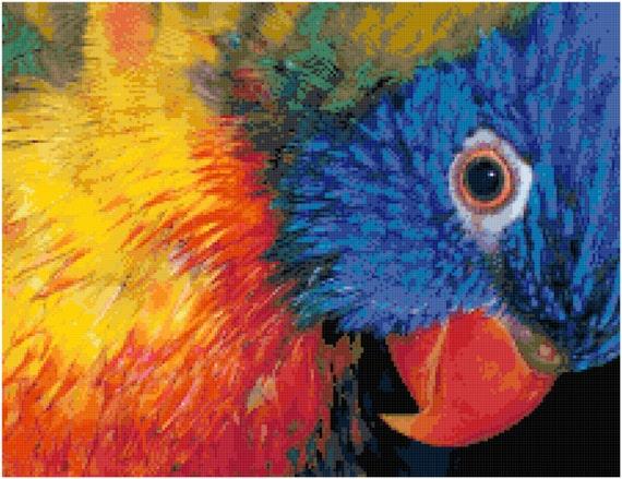 Rainbow Lorikeet Close-up Counted Cross Stitch Pattern Chart PDF Download by Stitching Addiction