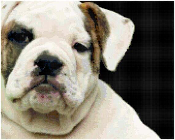 Bulldog Counted Cross Stitch Pattern Chart PDF Download by Stitching Addiction