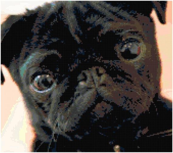 Black Pug Counted Cross Stitch Pattern Chart PDF Download by Stitching Addiction