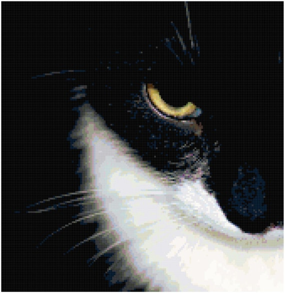 Black and White Cat Eye Counted Cross Stitch Pattern Chart PDF Download by Stitching Addiction