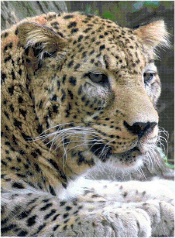 Leopard Counted Cross Stitch Pattern Chart PDF Download by Stitching Addiction