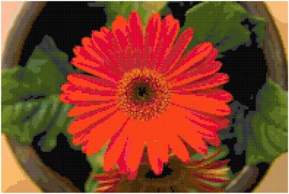 Red Orange Gerber Gerbera Daisy Counted Cross Stitch Pattern Chart PDF Download by Stitching Addiction