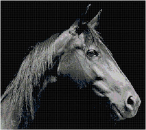 Horse in Black and White Counted Cross Stitch Pattern Chart PDF Download by Stitching Addiction
