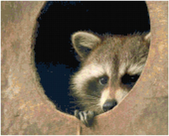 Raccoon Counted Cross Stitch Pattern Chart PDF Download by Stitching Addiction