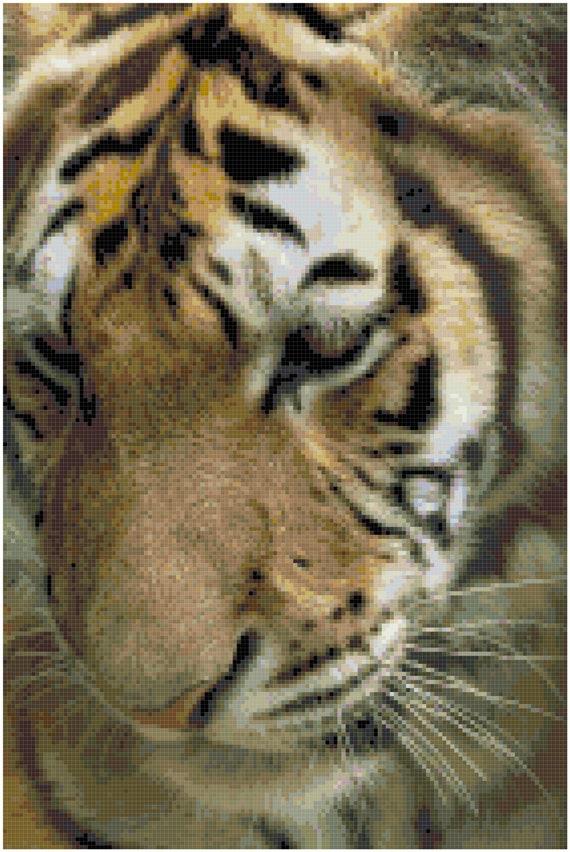Tiger Counted Cross Stitch Pattern Chart PDF Download by Stitching Addiction