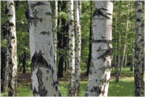 Birch Trees Landscape Counted Cross Stitch Pattern Chart PDF Download by Stitching Addiction