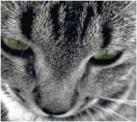 Green Eyed Cat Closeup Gray Tabby Counted Cross Stitch Pattern Chart PDF Download by Stitching Addiction