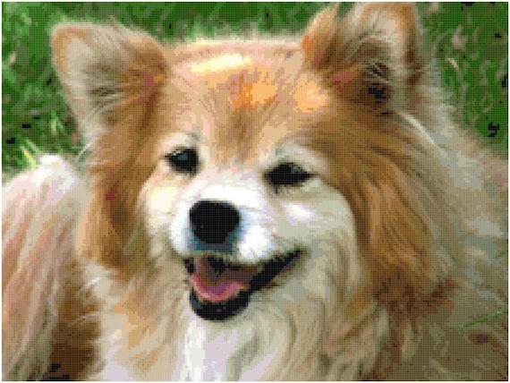 Pomeranian Counted Cross Stitch Pattern Chart PDF Download by Stitching Addiction